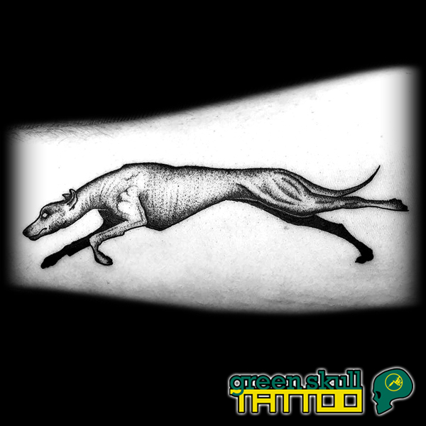 5-tattoo-tetovalas-agar-greyhound-dotwork-blackwork.jpg